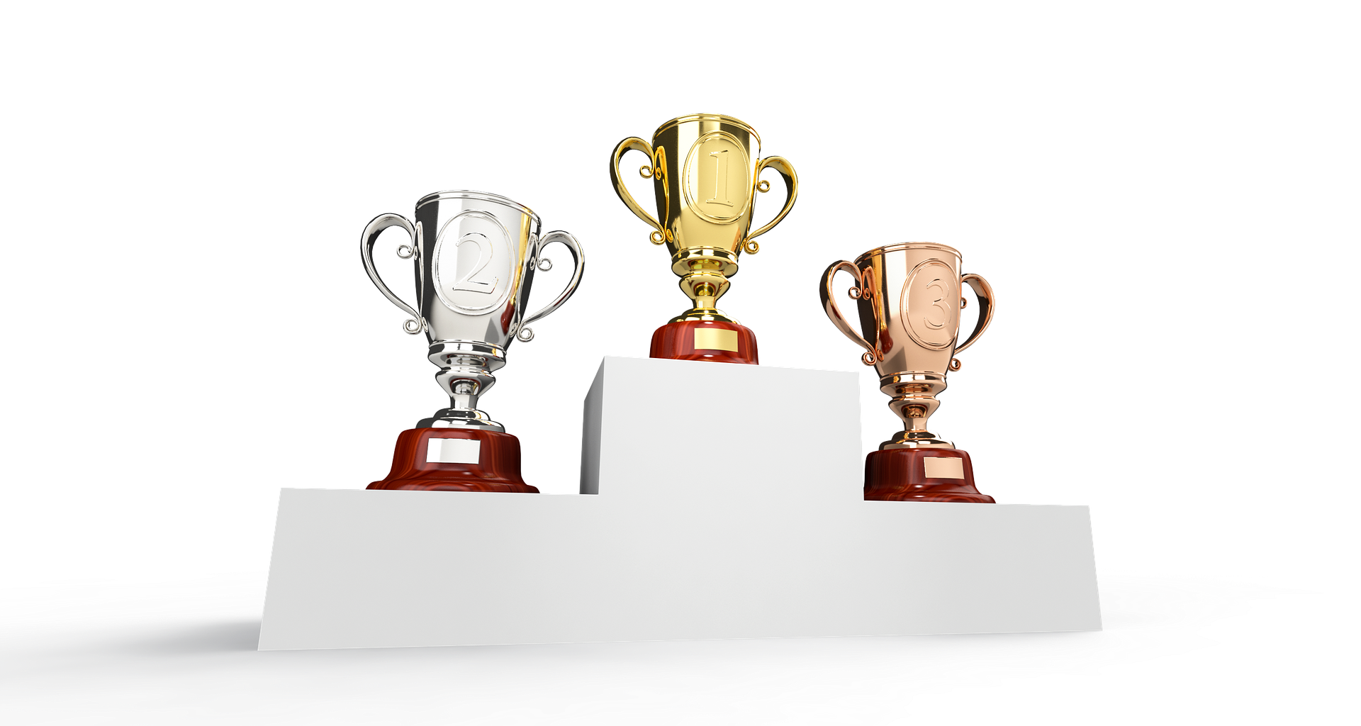November tipster competition results and money prizes