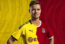Benfica buys Julian Weigl from Borussia Dortmund